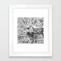 In The Tall Summer Grass Framed Art Print