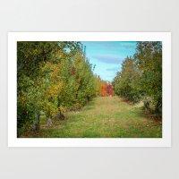 Branstool Orchards Art Print