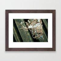 Skeleton Leaf Framed Art Print