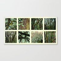 Alpine Rainforest Canvas Print
