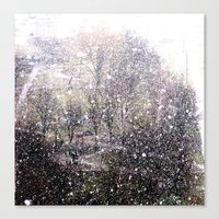 Snow in early fall(1)  Canvas Print