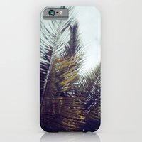 iPhone & iPod Case featuring Palm Sky II by istillshootfilm
