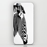 Zebra Portrait iPhone & iPod Skin