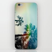 Palm trees of Barcelona iPhone & iPod Skin