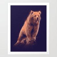 Sun Bear Art Print