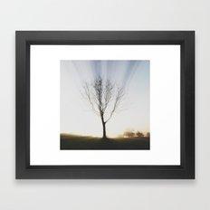 Insta Tree of Life Framed Art Print