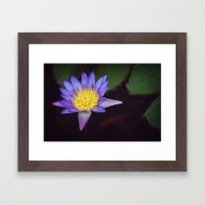 The frog's serenade spot Framed Art Print