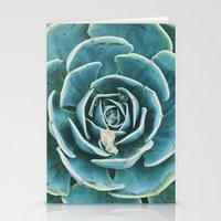 echeveria. succulent photo Stationery Cards