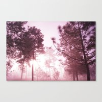 Sunrising Canvas Print