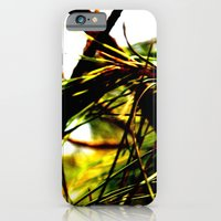 iPhone & iPod Case featuring Pine needles by Tamar Isaak