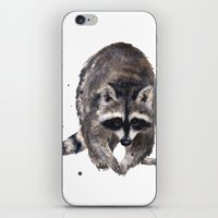 RACOON painting, wilderness nursery art, woodland animal art, racoon watercolor, cute racoon print iPhone & iPod Skin