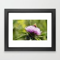 Bee In The Right Place (… Framed Art Print