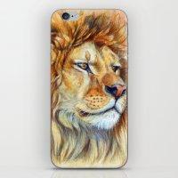 Lion 851 iPhone & iPod Skin