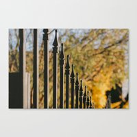 iron fence, yellow leaves Canvas Print