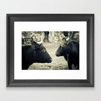 Cow Friends Framed Art Print