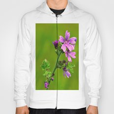 Common Mallow (Cheeseweed) Hoody