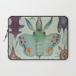 Laptop Sleeve - Cephalopodoptera Tab. I - Vladimir Stankovic