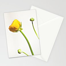 Golden Yellow Ranunculus Flowers on White Stationery Cards