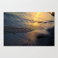 Shore 'nough  Canvas Print