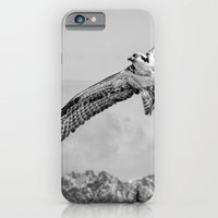 iPhone & iPod Case featuring Osprey over Olympus by nickcollins.ca