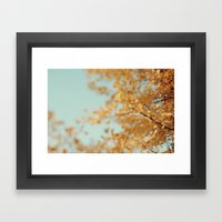 Ginkgo #6 Framed Art Print