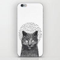 Dandelion black cat iPhone & iPod Skin