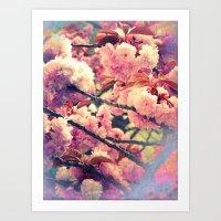 Kirschblüten #1 Art Print