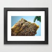 Caribbean Bees Framed Art Print
