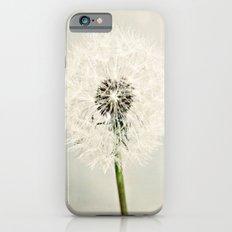 Dandelion Dreams  iPhone 6s Slim Case