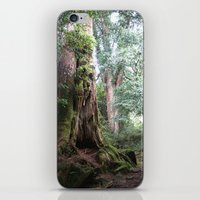 Ancient Tree iPhone & iPod Skin