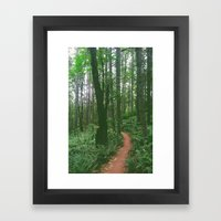 a Trail Framed Art Print