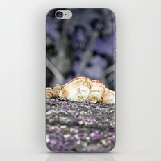 Fungus iPhone & iPod Skin