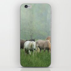 Out in the rain iPhone & iPod Skin