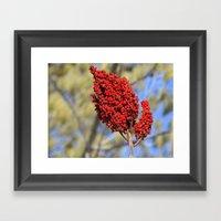 Simply Red Framed Art Print