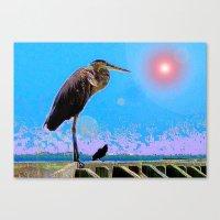 Big Bird, Little Bird Canvas Print