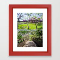 Bridges And Branches Framed Art Print