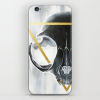 The Cat's Halo iPhone & iPod Skin