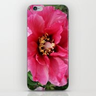 iPhone & iPod Skin featuring Red Peony by Christiane W. Schulz…