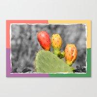 Three Spiky Ones Canvas Print