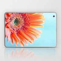Gerbera Daisy Laptop & iPad Skin