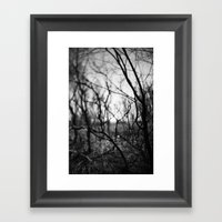 amongst the shadows. Framed Art Print