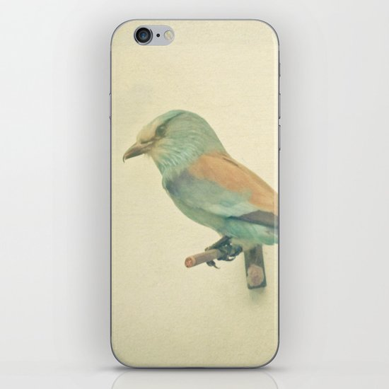 Bird Study #2 iPhone & iPod Skin