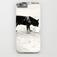Dog on the street iPhone 6 Slim Case