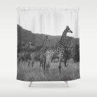 Kaleidoscope of Giraffes Shower Curtain