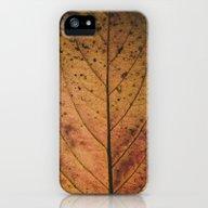 Little Memory - Fallen  iPhone (5, 5s) Slim Case