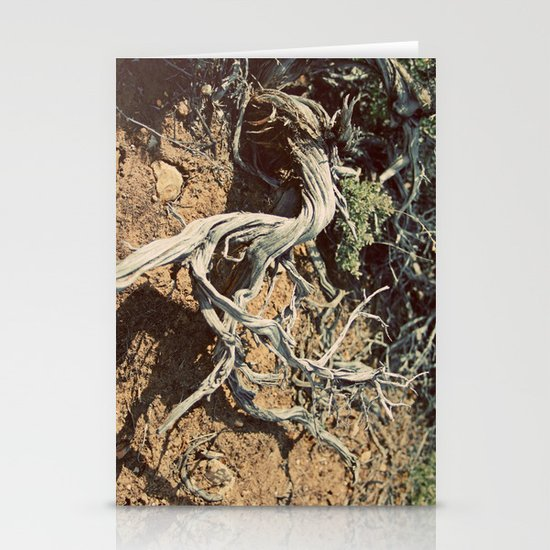 Desert spirit Stationery Card