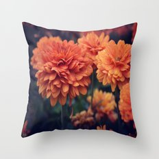 Sweet Orange  Throw Pillow