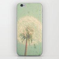Dandelion Clock iPhone & iPod Skin