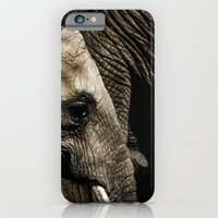 A baby elephant and his mother iPhone 6 Slim Case