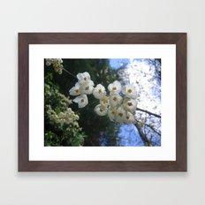 park o36 Framed Art Print